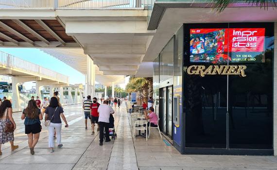 Paseo El Palmeral pantallas-digitales